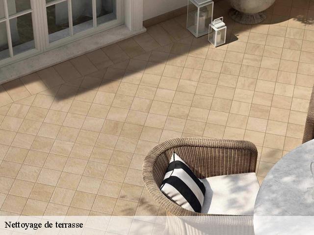 nettoyer une terrasse en pierre terrasse pierre nettoyage. Black Bedroom Furniture Sets. Home Design Ideas
